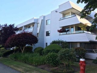 """Photo 1: 103 1341 GEORGE Street: White Rock Condo for sale in """"OCEANVIEW"""" (South Surrey White Rock)  : MLS®# R2183251"""