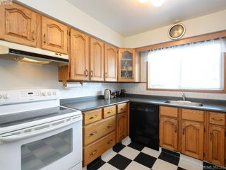 Photo 8: 1716 Albert Ave in VICTORIA: Vi Jubilee House for sale (Victoria)  : MLS®# 768168