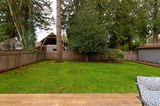 Photo 31: 12295 CRESTON Street in Maple Ridge: West Central House for sale : MLS®# R2252102