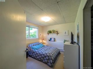 Photo 11: 1455 Denman Street in VICTORIA: Vi Fernwood Single Family Detached for sale (Victoria)  : MLS®# 392644