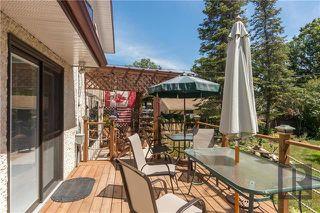 Photo 16: 54 Nichol Avenue in Winnipeg: Residential for sale (2C)  : MLS®# 1819593