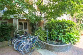 "Photo 12: 309 2588 ALDER Street in Vancouver: Fairview VW Condo for sale in ""BOLLERT PLACE"" (Vancouver West)  : MLS®# R2339876"