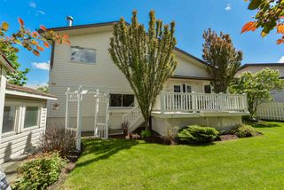 Photo 28: 16 MCKEAN Way: Spruce Grove House for sale : MLS®# E4161297