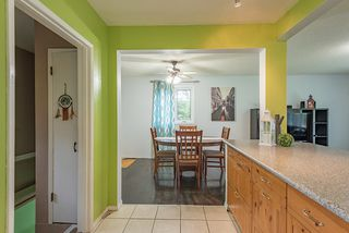 Photo 10: 10438 163 Street in Edmonton: Zone 21 House for sale : MLS®# E4164858