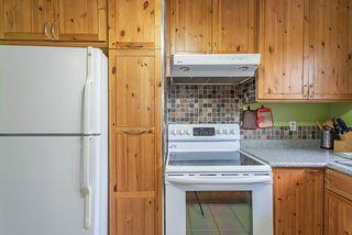 Photo 6: 10438 163 Street in Edmonton: Zone 21 House for sale : MLS®# E4164858