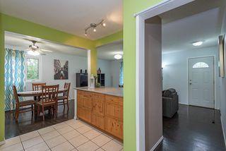 Photo 9: 10438 163 Street in Edmonton: Zone 21 House for sale : MLS®# E4164858
