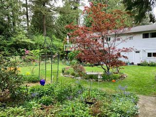 """Photo 30: 20358 41A Avenue in Langley: Brookswood Langley House for sale in """"Brookswood"""" : MLS®# R2464569"""