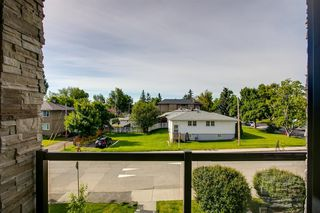 Photo 38: 3118 14 Avenue SW in Calgary: Shaganappi Detached for sale : MLS®# A1032393