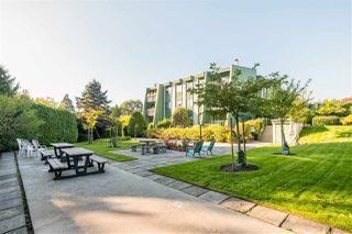 "Photo 19: 211 3911 CARRIGAN Court in Burnaby: Government Road Condo for sale in ""LOUGHEED ESTATES"" (Burnaby North)  : MLS®# R2507454"