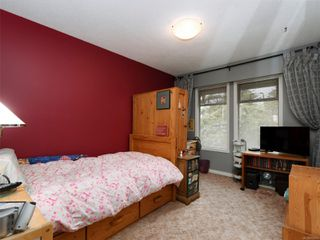 Photo 17: 4166 Tuxedo Dr in : SE Lake Hill House for sale (Saanich East)  : MLS®# 858926