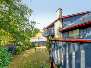 Photo 22: 4166 Tuxedo Dr in : SE Lake Hill House for sale (Saanich East)  : MLS®# 858926