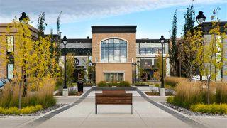 Photo 16: 935 200 Bellerose Drive: St. Albert Condo for sale : MLS®# E4219922