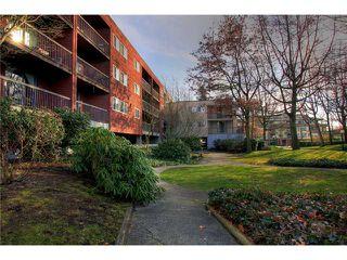 "Main Photo: 103 8391 BENNETT Road in Richmond: Brighouse South Condo for sale in ""GARDEN GLEN"" : MLS®# V873386"