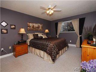 Photo 10: 7718 Grieve Crescent in SAANICHTON: CS Saanichton Single Family Detached for sale (Central Saanich)  : MLS®# 296859