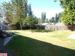Photo 7: 34453 KENT Avenue in Abbotsford: Abbotsford East House for sale : MLS®# F1122221