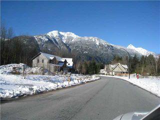 Photo 2: 41448 DRYDEN Road in Squamish: Brackendale Land for sale : MLS®# V921544