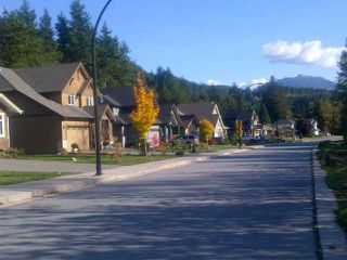 Photo 3: 41448 DRYDEN Road in Squamish: Brackendale Land for sale : MLS®# V921544