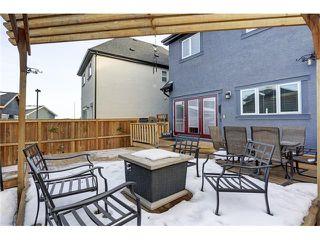 Photo 34: 134 MAHOGANY Heights SE in Calgary: Mahogany House for sale : MLS®# C4060234