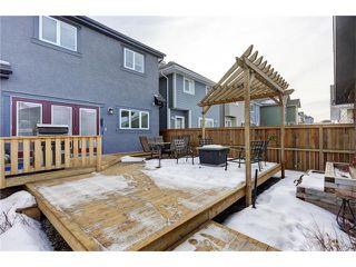 Photo 33: 134 MAHOGANY Heights SE in Calgary: Mahogany House for sale : MLS®# C4060234