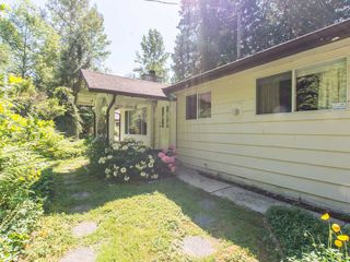 "Photo 14: 10911 248TH Street in Maple Ridge: Albion House for sale in ""North Albion"" : MLS®# R2067970"