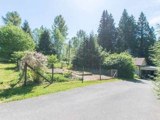 "Photo 20: 10911 248TH Street in Maple Ridge: Albion House for sale in ""North Albion"" : MLS®# R2067970"