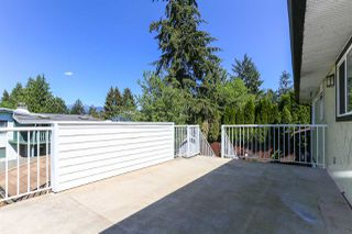 Photo 19: 22579 123 Avenue in Maple Ridge: East Central House for sale : MLS®# R2068168
