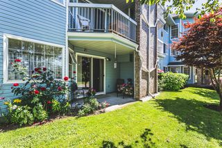 "Photo 16: 102 11510 225 Street in Maple Ridge: East Central Condo for sale in ""FRASER VILLAGE"" : MLS®# R2182477"