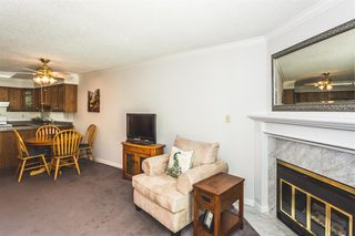 "Photo 7: 102 11510 225 Street in Maple Ridge: East Central Condo for sale in ""FRASER VILLAGE"" : MLS®# R2182477"