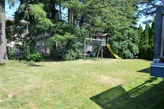 Photo 13: 32217 PINEVIEW Avenue in Abbotsford: Abbotsford West House for sale : MLS®# R2188827
