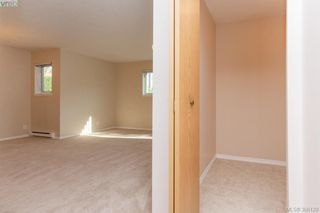 Photo 16: 106 3258 Alder St in VICTORIA: SE Quadra Condo Apartment for sale (Saanich East)  : MLS®# 775931