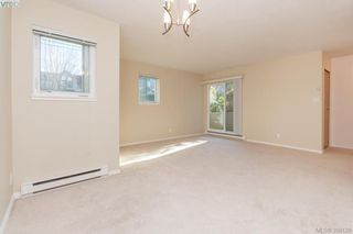Photo 9: 106 3258 Alder St in VICTORIA: SE Quadra Condo Apartment for sale (Saanich East)  : MLS®# 775931