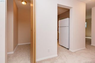 Photo 17: 106 3258 Alder Street in VICTORIA: SE Quadra Condo Apartment for sale (Saanich East)  : MLS®# 386128