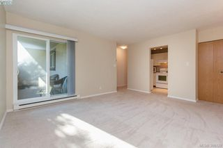 Photo 5: 106 3258 Alder Street in VICTORIA: SE Quadra Condo Apartment for sale (Saanich East)  : MLS®# 386128