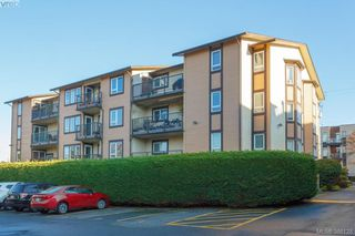 Photo 1: 106 3258 Alder Street in VICTORIA: SE Quadra Condo Apartment for sale (Saanich East)  : MLS®# 386128
