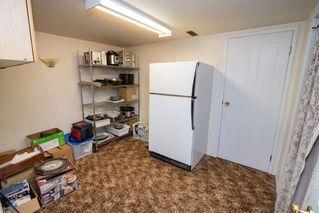 Photo 21: 485 Viscount Crescent: Sherwood Park House for sale : MLS®# E4141023