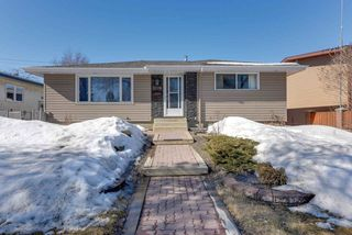 Main Photo: 9310 165 Street in Edmonton: Zone 22 House for sale : MLS®# E4148497