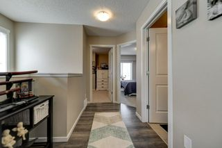 Photo 10: 4125 6A Street in Edmonton: Zone 30 House for sale : MLS®# E4156887