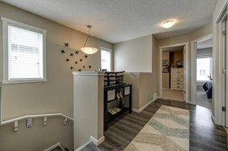 Photo 9: 4125 6A Street in Edmonton: Zone 30 House for sale : MLS®# E4156887