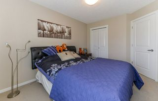 Photo 17: 4125 6A Street in Edmonton: Zone 30 House for sale : MLS®# E4156887