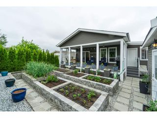 """Photo 1: 205 3665 244 Street in Langley: Otter District Manufactured Home for sale in """"Langley Grove Estates"""" : MLS®# R2372975"""