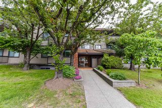 "Main Photo: 301 535 BLUE MOUNTAIN Street in Coquitlam: Central Coquitlam Condo for sale in ""REGAL COURT"" : MLS®# R2377493"