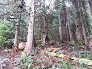 Photo 19: 9 GAMBIER ISLAND SEA Ranch in Sunshine Coast: Home for sale : MLS®# R2162449