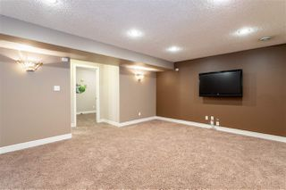 Photo 23: 12071 21 Avenue in Edmonton: Zone 55 House for sale : MLS®# E4169665