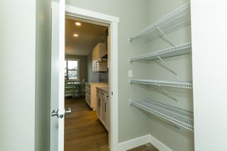 Photo 7:  in Edmonton: Zone 56 House for sale : MLS®# E4176973