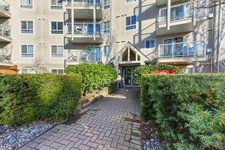 Photo 20: 217 8110 120A Street in Surrey: Queen Mary Park Surrey Condo for sale : MLS®# R2435987