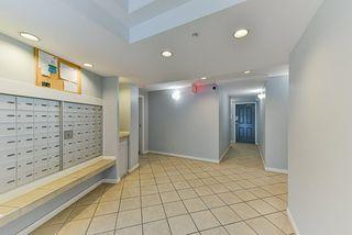 Photo 4: 217 8110 120A Street in Surrey: Queen Mary Park Surrey Condo for sale : MLS®# R2435987