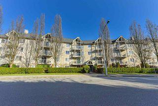 Photo 1: 217 8110 120A Street in Surrey: Queen Mary Park Surrey Condo for sale : MLS®# R2435987