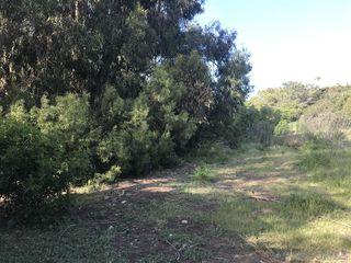 Photo 2: SAN DIEGO Property for sale: APN 357-570-30-00 in La Jolla