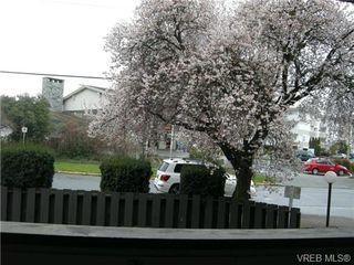 Photo 13: 210 1619 Morrison St in VICTORIA: Vi Jubilee Condo for sale (Victoria)  : MLS®# 665023