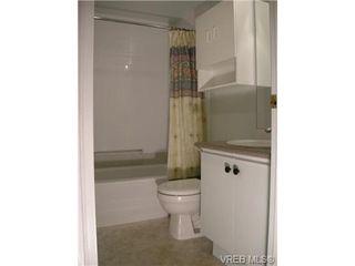 Photo 11: 210 1619 Morrison St in VICTORIA: Vi Jubilee Condo for sale (Victoria)  : MLS®# 665023